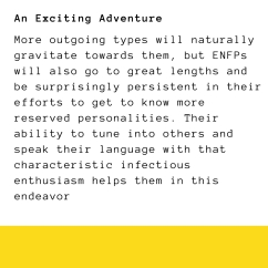 dis me- a campaigneror as 16 personalities likes to call it _(ENFP-T)_ (15)