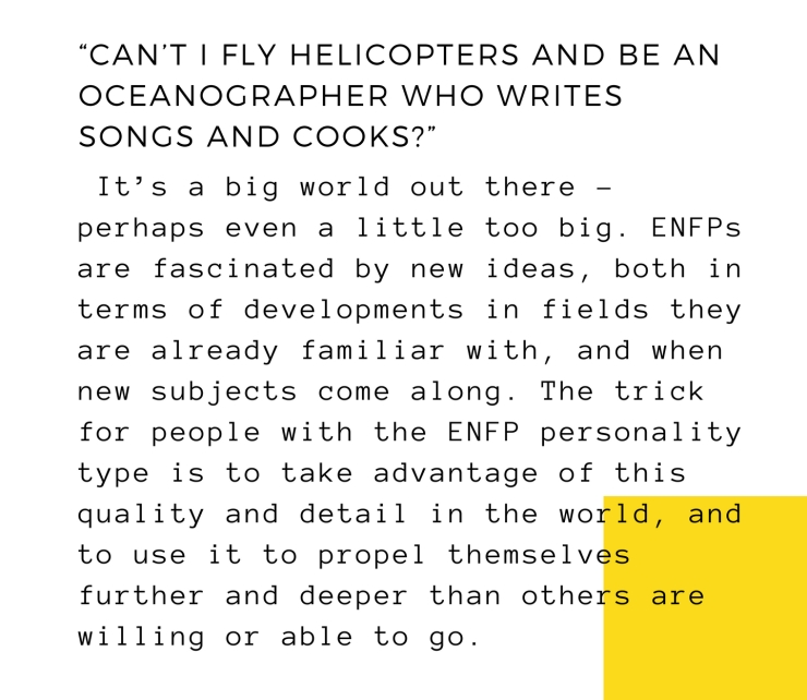 dis me- a campaigneror as 16 personalities likes to call it _(ENFP-T)_ (18)